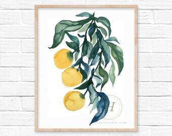 Large Oranges Watercolor Print Kitchen Art