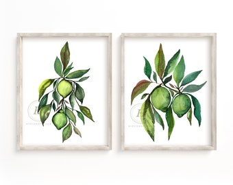 Limes Print Set of 2, Watercolor Lime, Kitchen Art