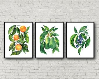 Avocado Orange Blueberry prints, Set of 3, Watercolor wall art, Kitchen decor
