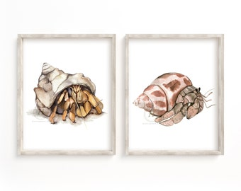Crab Prints Set of 2, Wall Art, Hermit Crab Art, Watercolor Crabs