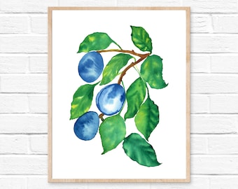 Plums Watercolor Print