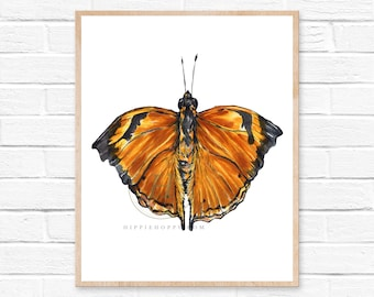 Butterfly Art, Butterfly Watercolor, Butterfly Print, Butterfly, Butterfly Painting, Insect Art, Orange, Brown, Black