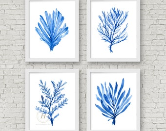 Coral Watercolor Prints