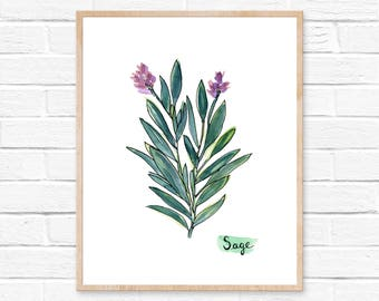 Sage Watercolor Print No.103, Sage Leaves Art Print, Sage Watercolor Print, Herb Print, Botanical Art, Kitchen Decor, Minimalist Art Decor