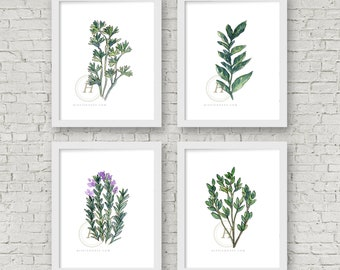 Herb Set of 4 Prints, Parsley, Basil, Rosemary, Oregano, Watercolor Herbs, Kitchen Wall Art