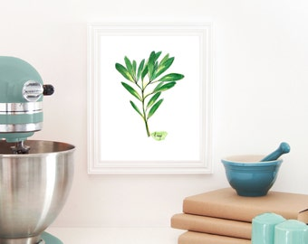 Sage Print, Herb painting, Kitchen Wall Decor, Cooking Art, Herb Kitchen Art, Garden art, Botanical Decor, Green Art, Watercolor Print, Herb