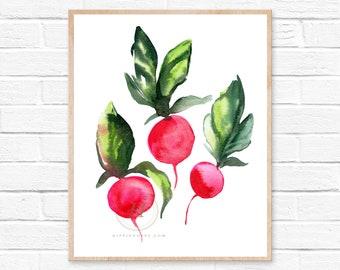 Radish Watercolor Print