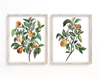 Pears Fruit Art Prints Set of 2