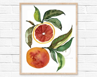 Grapefruit Watercolor Art Print Kitchen Decor