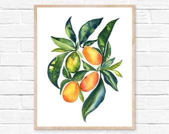 kumquat orange kumquats citrus fruit illustration botanical botanical print home decor kitchen decor kitchen art watercolor floral painting