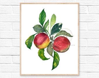 Apple Watercolor Print