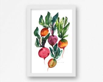 Colorful Radish Watercolor Print 11x17