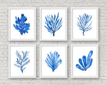 Nautical Set Coral and Seaweed Set of 6 Prints, Watercolor Wall Art, Beach Nursery Print, Coral Blue Beach Decor, Coral Art, Seaweed, Ocean