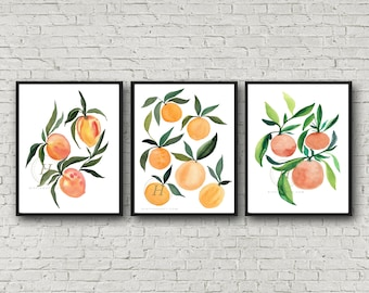 Apricots and Oranges print set of 3, Watercolor fruit painting