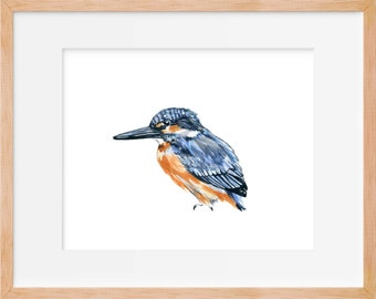 Kingfisher Print, Kingfisher Bird, Kingfisher Watercolor, Bird Art, Bird Watercolor, Bird Illustration, Bird Art, Bird Painting