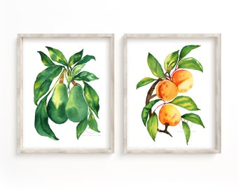 Large Avocado and Apricot Watercolor Prints
