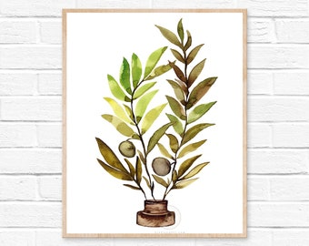 Olive Branch, Watercolor Print