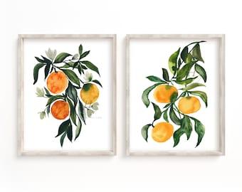 Citrus Orange Fruit Art Print Set of 2