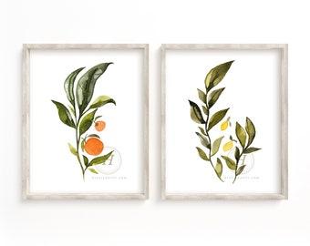Citrus Watercolor Prints set of 2