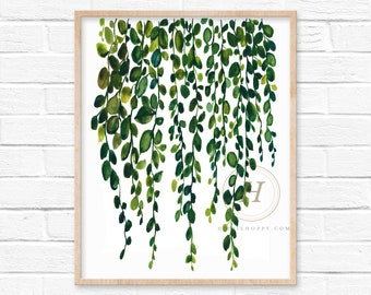 String of Pearls Wall Watercolor Print
