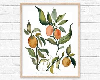 Kumquats Watercolor Print