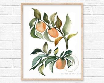 Kumquats Watercolor Art Print Kitchen Wall Decor by HippieHoppy