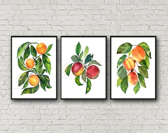Oranges Apples and Peaches Print Set of 3, Watercolor Kitchen Art, Wall Art