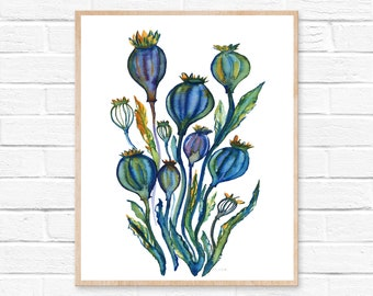 Poppy Seed Pods, Watercolor Print
