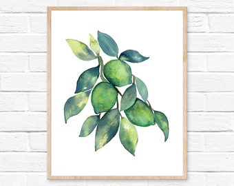 Lime art print lime watercolor print green citrus print kitchen art fruits art botanical study minimalist art home decor food watercolor art