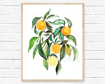 Orange Grove Watercolor Print Kitchen Wall Art