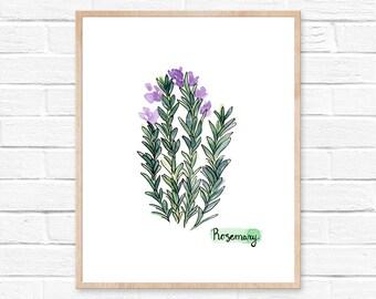Watercolor Rosemary Print No. 103, Herbs Kitchen Decor, Rosemary, Watercolor Print, Natural Kitchen Art, Herbs, Spices, Rosemary Watercolor