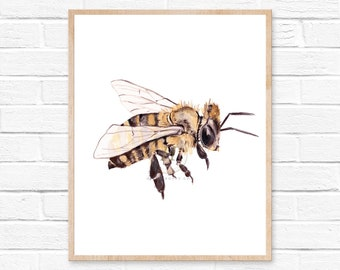 Honey Bee watercolor painting - Giclee print. Nature Illustration. Honey Bee, Flying bee, Lovely Bee art