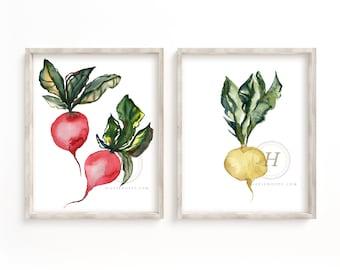 Radish Wall Watercolor Prints set of 2