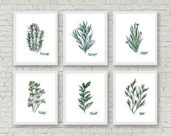 Herbs Set of 6 Watercolor Prints