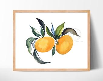 Orange Fruit Watercolor Print