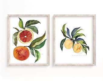 Grapefruit and Orange Watercolor Prints set of 2