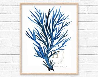 Coral Watercolor Print
