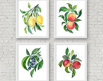 Watercolor Fruit Prints Set of 4 Lemons, Grapefruit, Apple, Blueberry