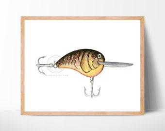 Fishing Lures Art Print, Unframed