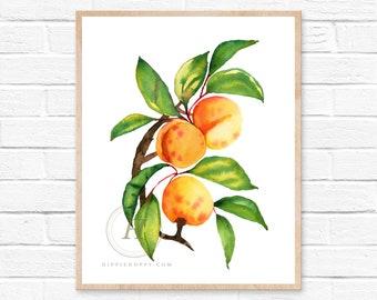 Apricot Art Watercolor Print