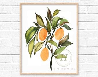 Kumquats Watercolor Print by HippieHoppy