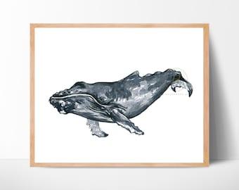 Humpback Whale Print, Watercolor Whale Art