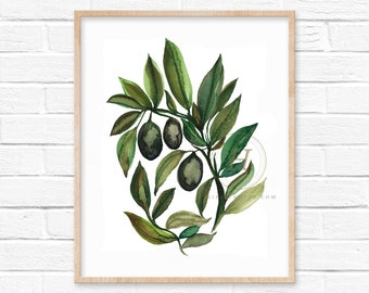 Olive Branch Watercolor Art Print