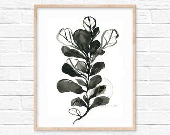 Fiddle Leaf Fig Watercolor Print