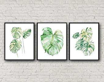 Monstera Watercolor Prints