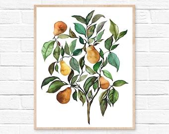 Large Pear Tree Watercolor Print