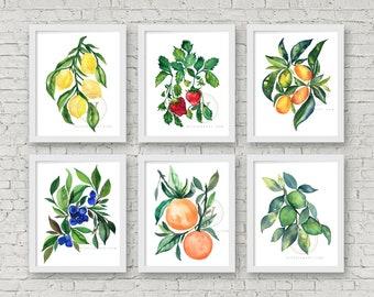 Fruit Watercolor Print Set of 6