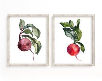 Beet and Radish Watercolor Prints set of 2