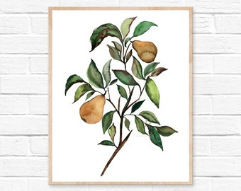 Large Pears Watercolor Print Kitchen Art