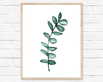 Eucalyptus Watercolor Print